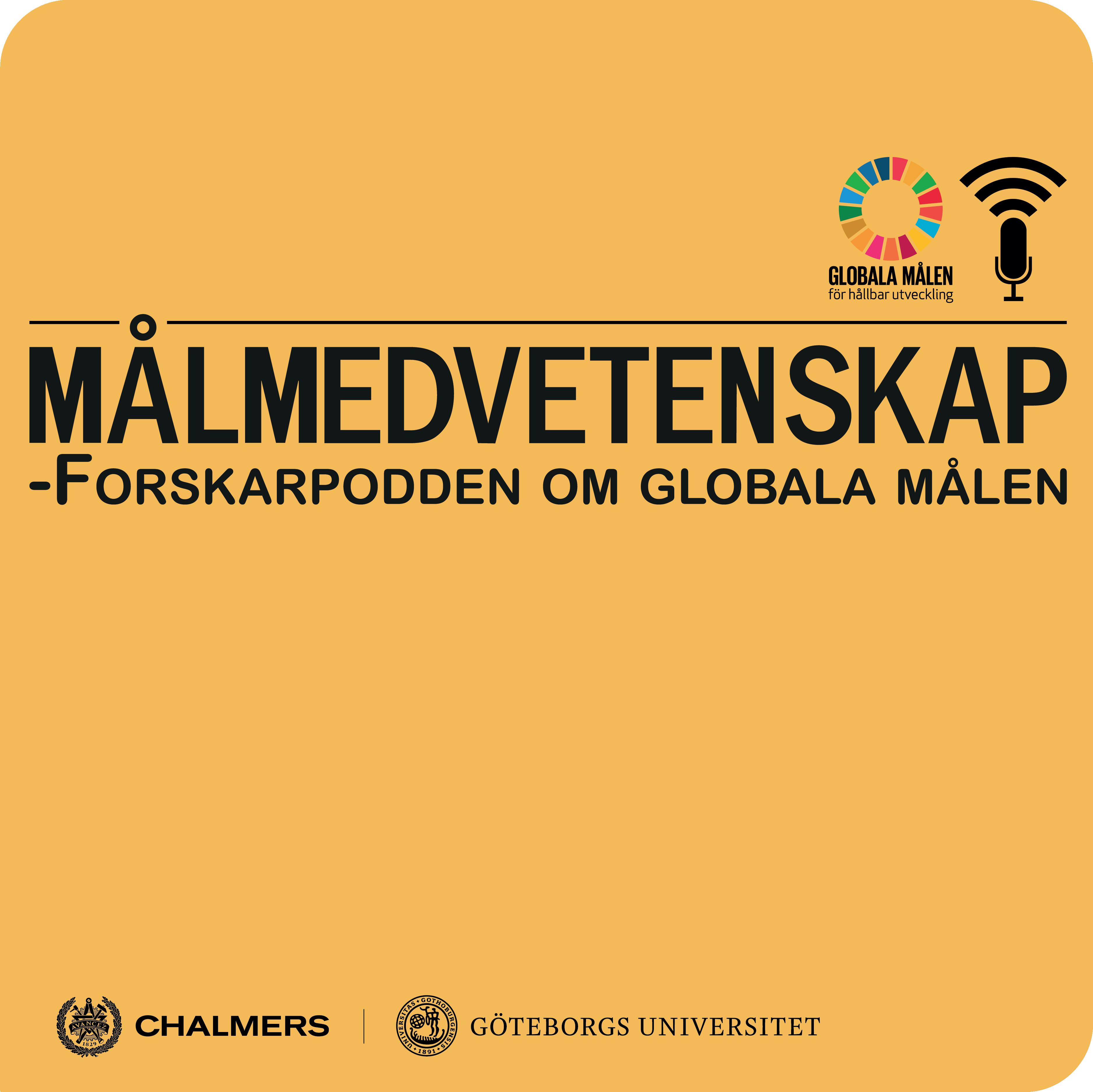 Målmedvetenskap - tema rörelse och globala målen